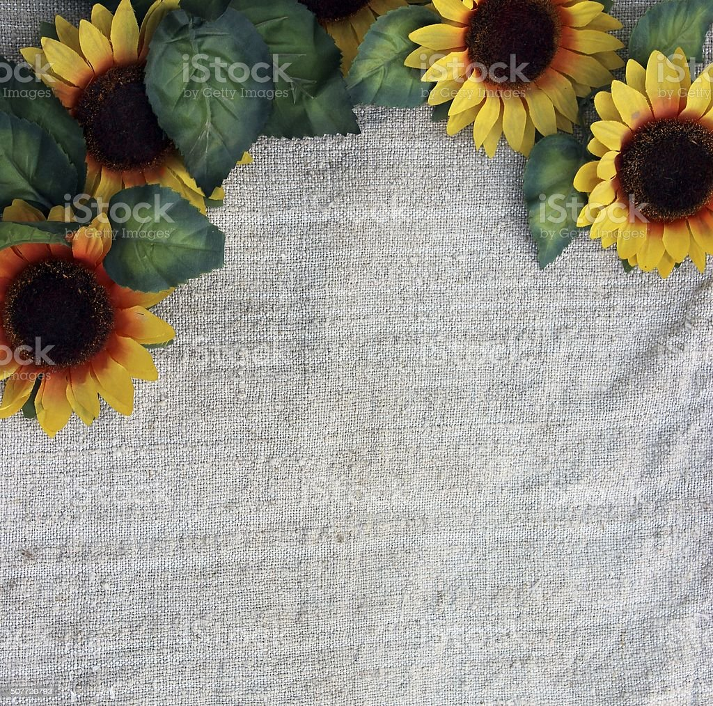 Sunflowers on fabric royalty-free stock photo
