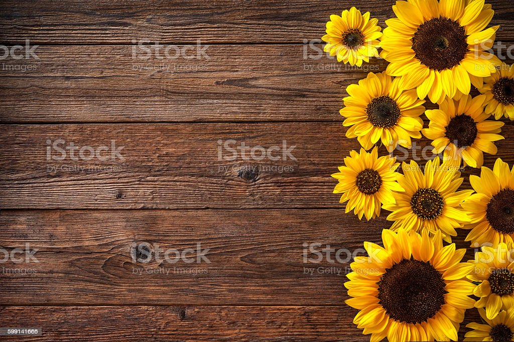 Sunflowers On Wooden Background Royalty Free Stock Photo