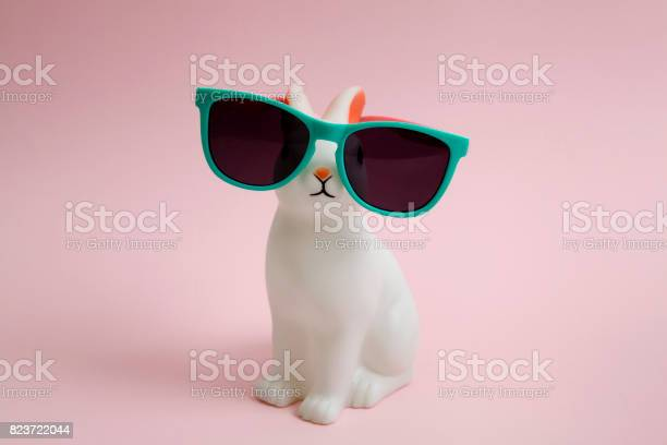 Sunglasses bunny picture id823722044?b=1&k=6&m=823722044&s=612x612&h=wvuwh3jm dnitngzc0z9imymerpsthw lbgzft q5xy=