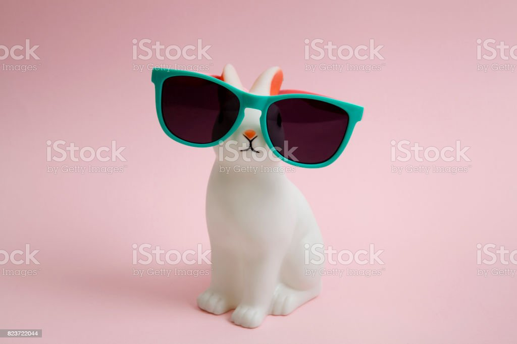 Sunglasses bunny stock photo