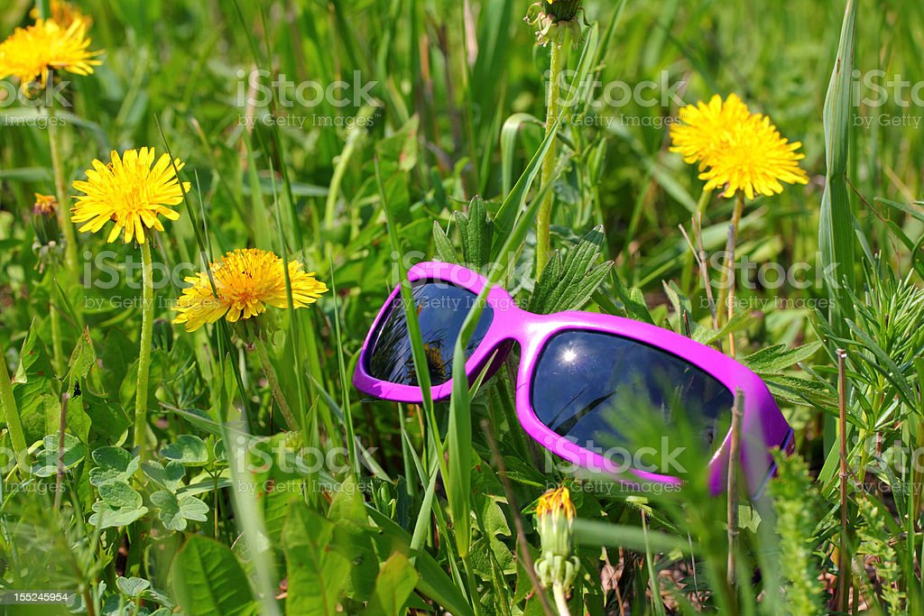 sunglasses in green grass with dandelions royalty-free stock photo