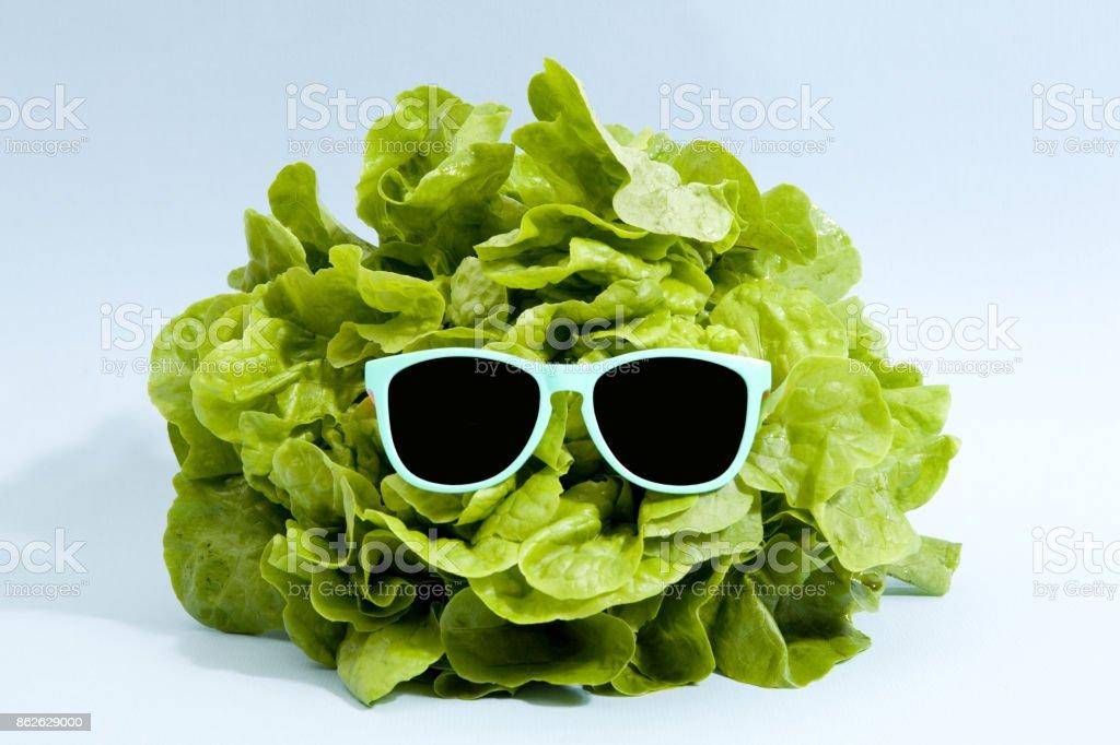 alface de óculos de sol foto de stock royalty-free