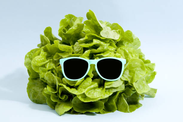 sunglasses lettuce - pop art stock photos and pictures