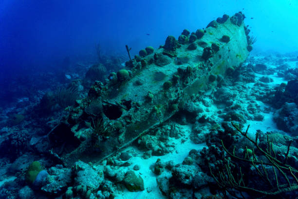sunken ship - artificial reef stock pictures, royalty-free photos & images