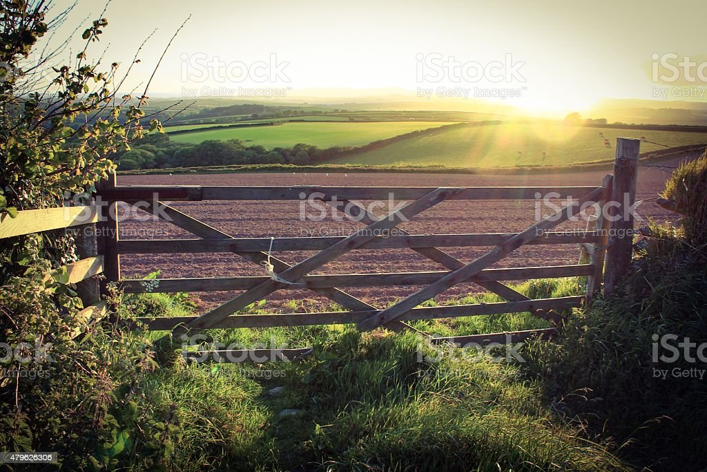 Sunlight and agriculture stock photo