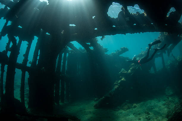 sunlight and world war ii shipwreck - artificial reef stock pictures, royalty-free photos & images