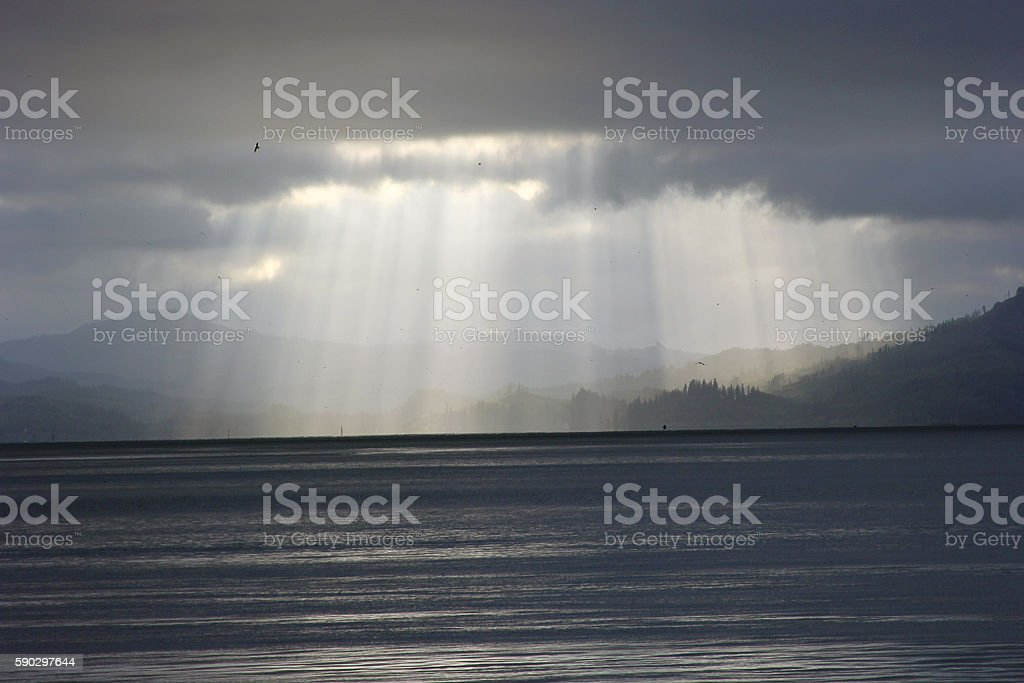 Sunlight Beams over Bay royaltyfri bildbanksbilder