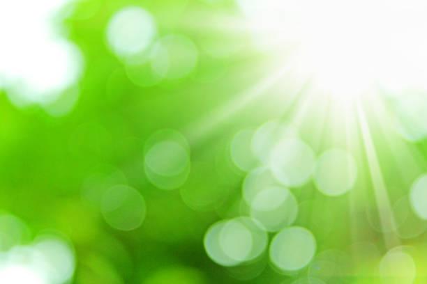 sunlight on a green background - flare foto e immagini stock