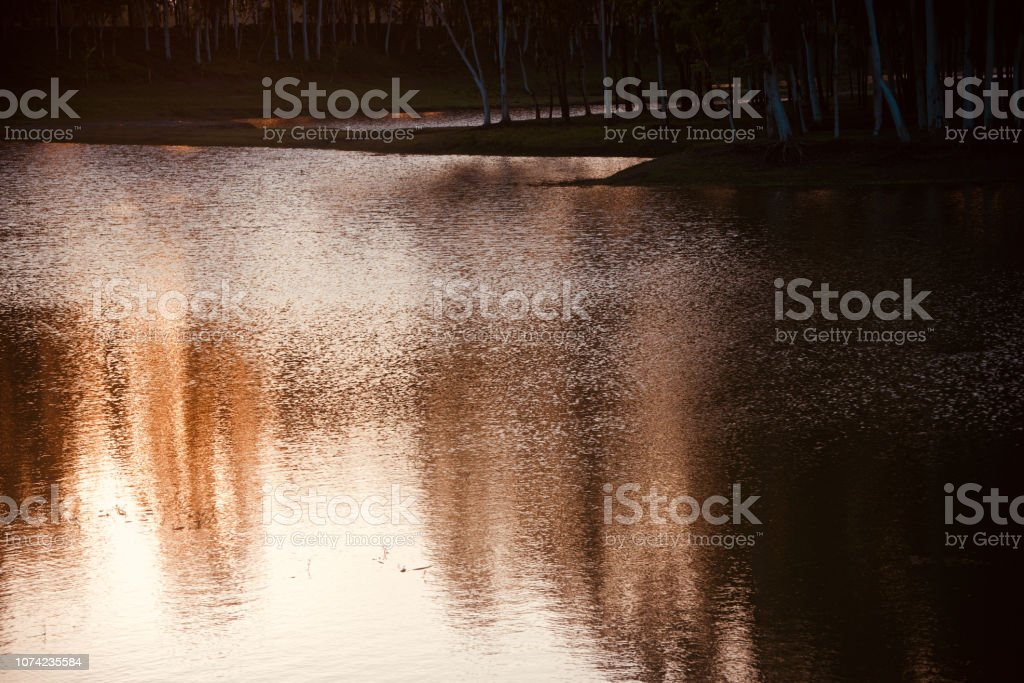 Sunlight reflection in water of a lake stock photo