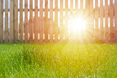 Sunlight through wooden fence on farm house lawn.