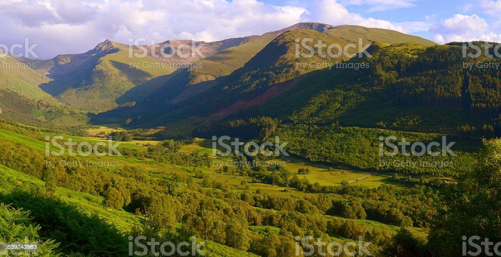 Sunlit Glen Below royalty-free stock photo