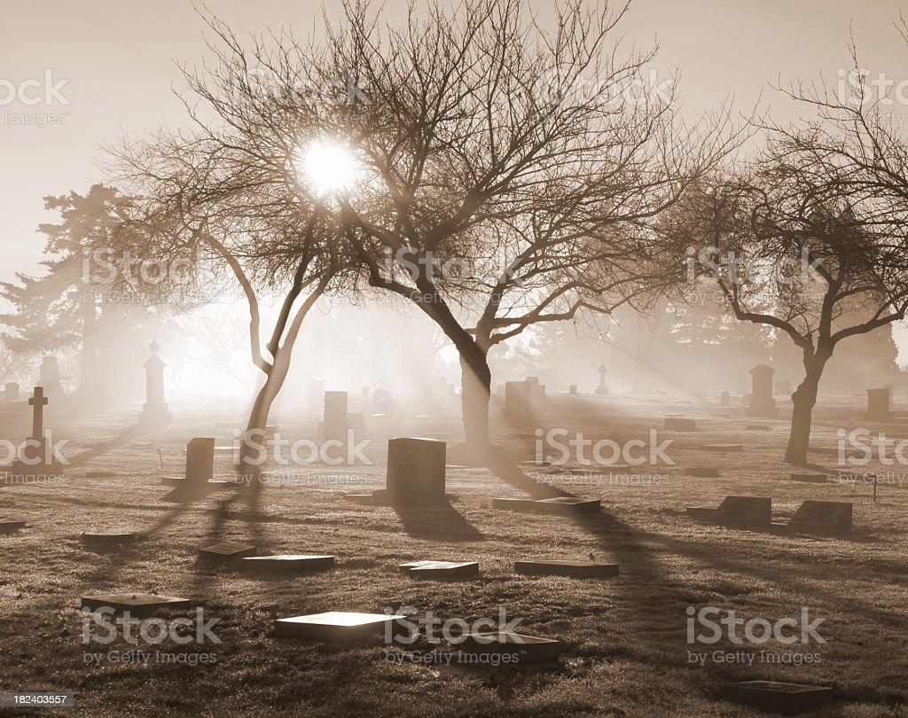 Sunlit misty graveyard in various gray tones stock photo