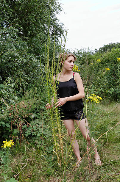 tall weld wildflower reseda luteola with outdoor girl - whiteway english outdoor girl stock photos and pictures