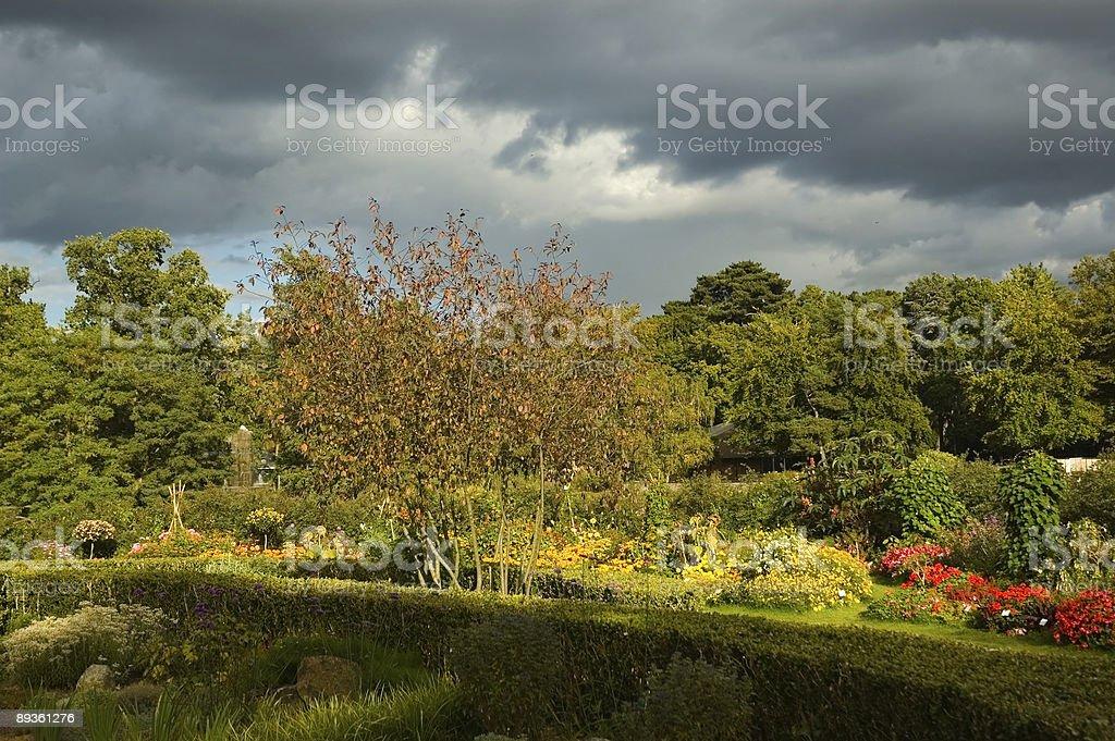 Luminoso cielo Parco con presa foto stock royalty-free