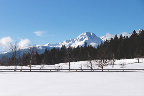 Sunlit snow mountain panorama with evergreen forest and fence in winterl andscape, Seefeld, Tirol, Austria stock photo