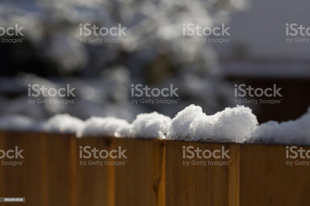 Neige ensoleillée sur le dessus de clôture en cèdre dans la Cour - Photo