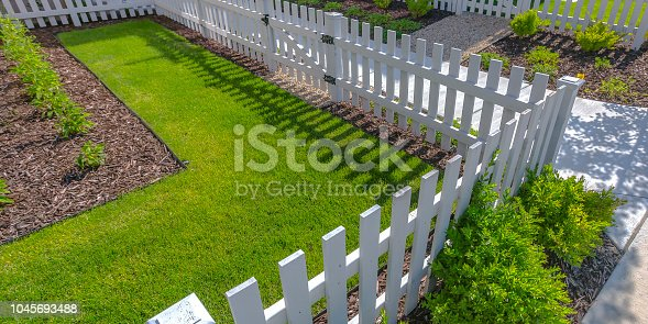 Sunlit yard with lawn white fence and shrubs. View of the front yard of a home surrounded by white wooden fence. The sun shines brightly on the manicured lawn and shrubs.