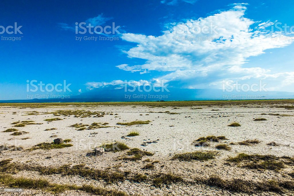Sunny african landscape stock photo