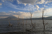istock Sunny afternoon in lake Chapala 1295830760