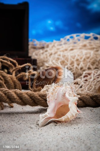 Sunny And Colorful Theme Of Summer Holidays Stock Photo & More Pictures of Animal