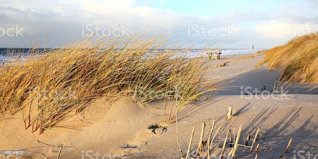 sunny beach of Sylt stock photo