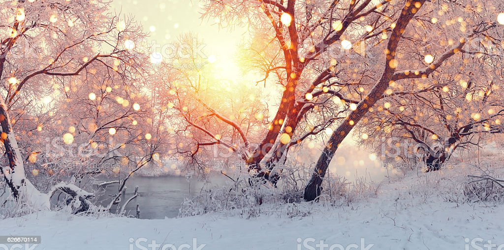 Sunny Christmas morning. Sun illuminate snowflakes. stock photo