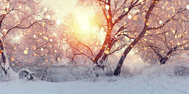Sunny Christmas morning. Sun illuminate snowflakes. stock photo