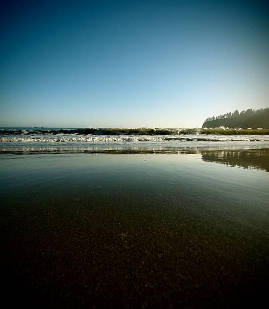 Sonnige Küste – Foto