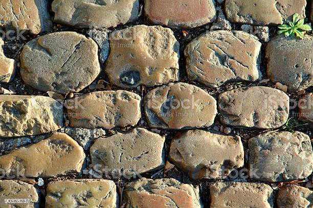 Photo of Sunny Cobbled Road Close Up