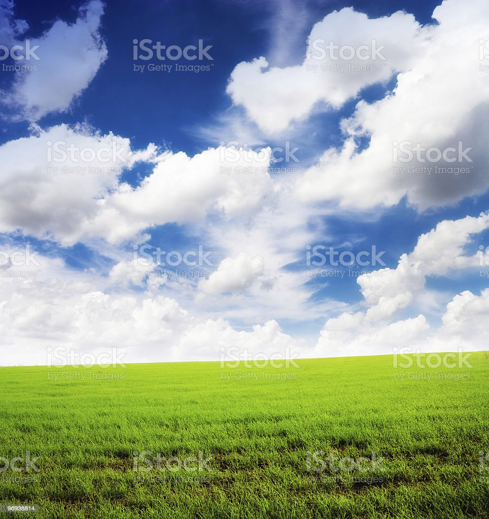 sunny day and green field royalty-free stock photo
