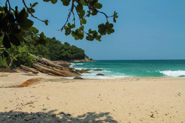 Sunny day ar the beach - Praia Vermelha do Centro - Ubatuba - SP