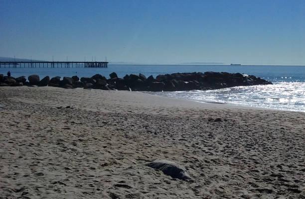 A Sunny Day at Venice Beach stock photo