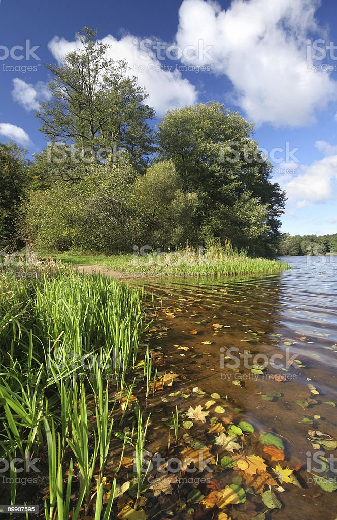 Sunny day by the lake royalty-free stock photo