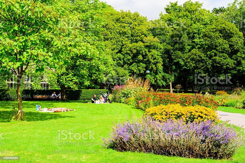 Sunny day in botanical garden royalty-free stock photo