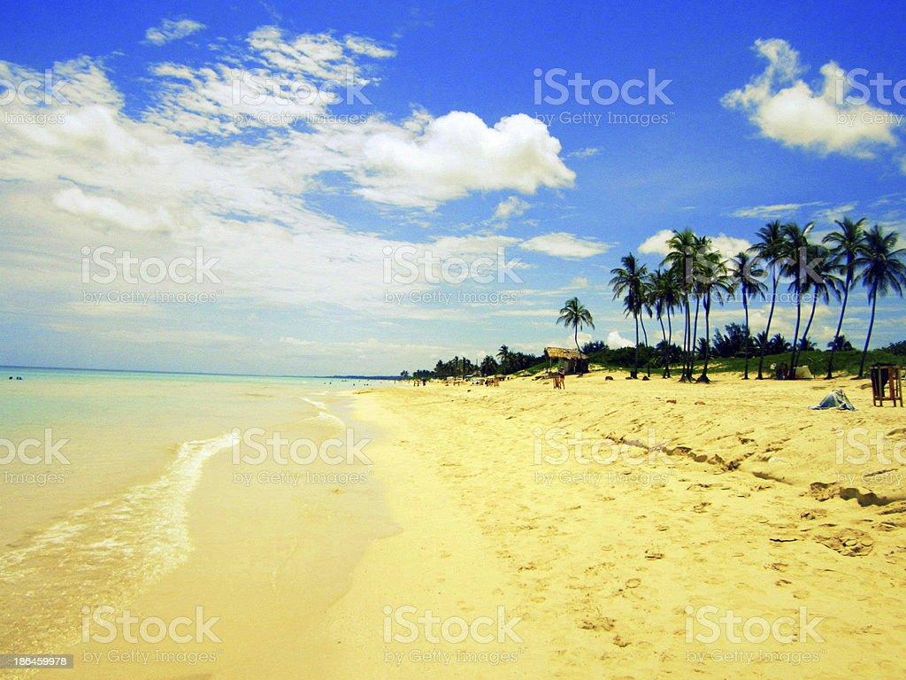 Sunny Day In Hawaii royalty-free stock photo