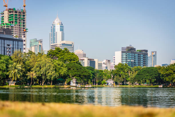 Sunny day in Lumphini Park in Bangkok, Thailand, skyscrapers in the background – zdjęcie