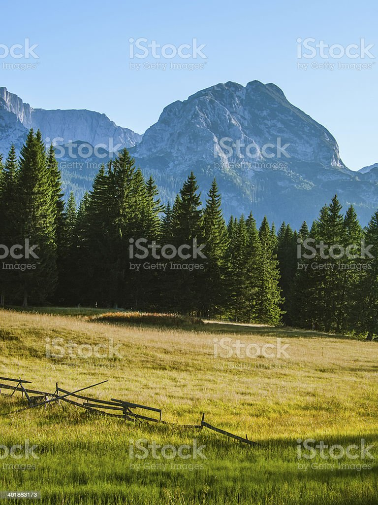 Sunny day in National park Durmitor, Montenegro stock photo