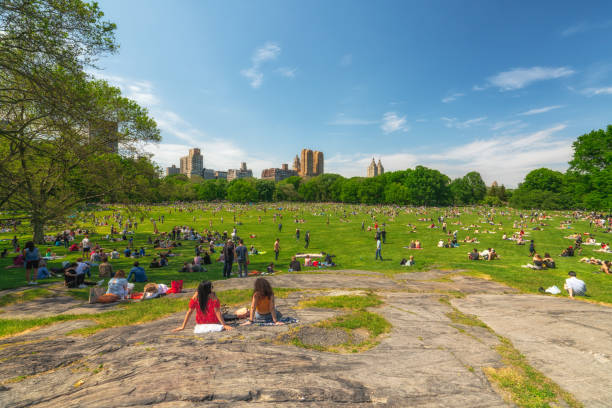 Sunny Day in New York City Central Park. Beautiful View, Resting People stock photo