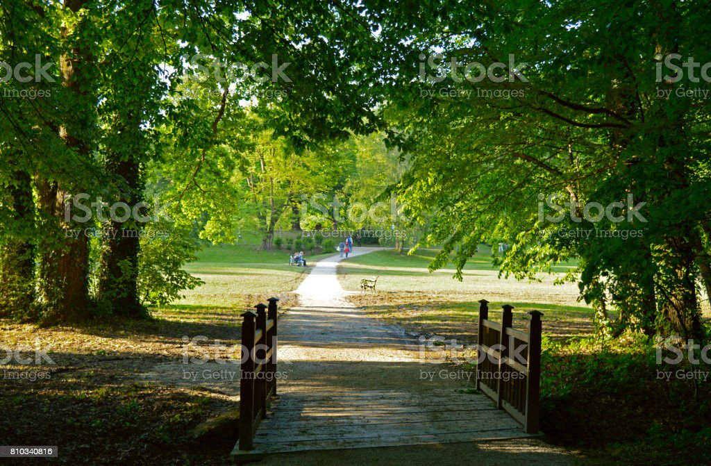 Sunny day in park stock photo