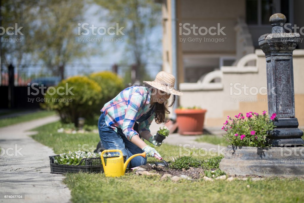 Sunny day is perfect for gardening royalty-free stock photo