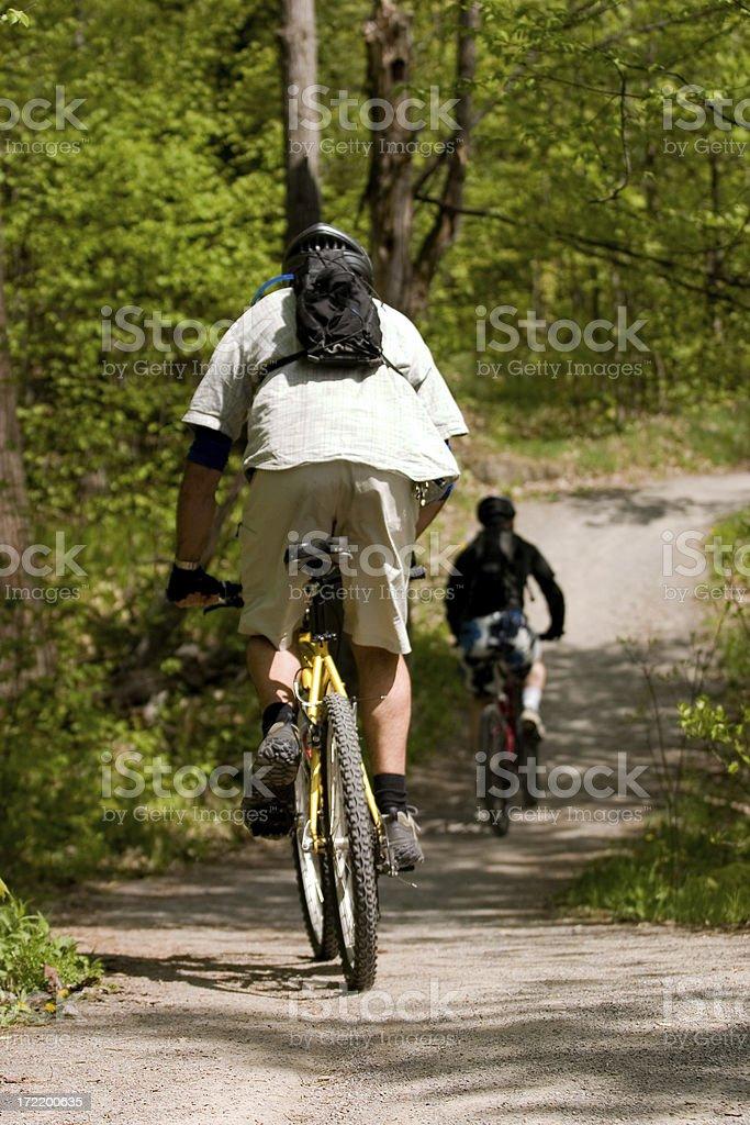 Sunny Day Mountain Biking royalty-free stock photo