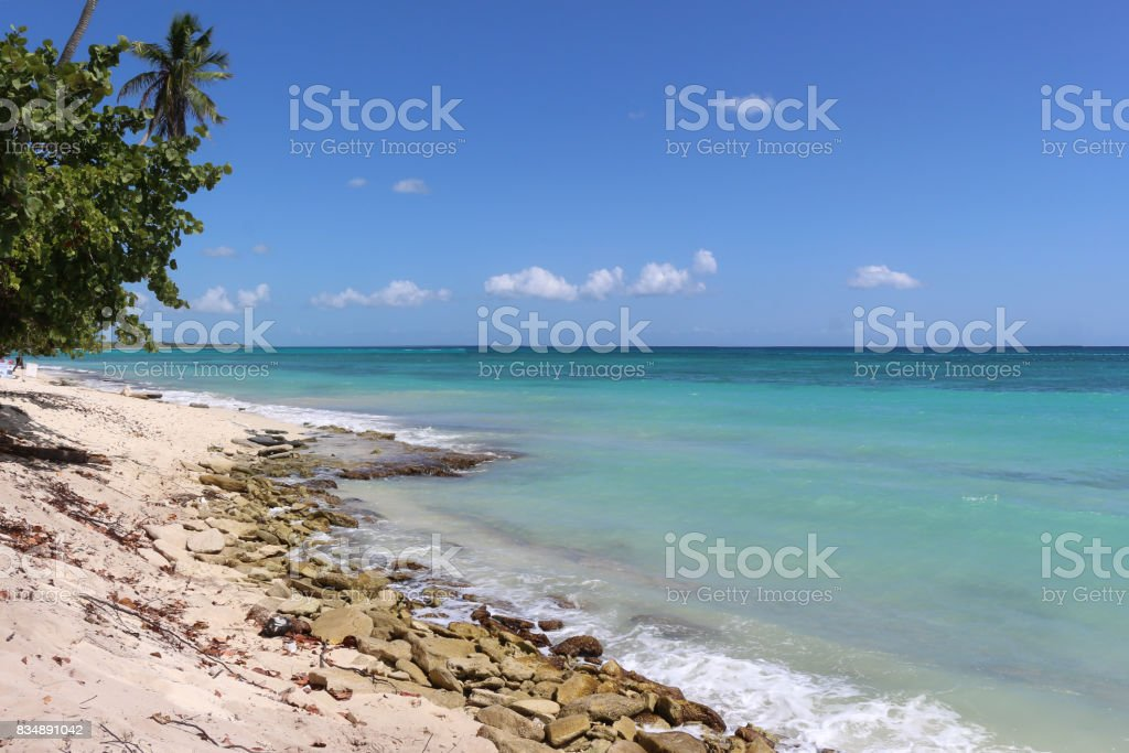Sunny day of summer at the beach stock photo