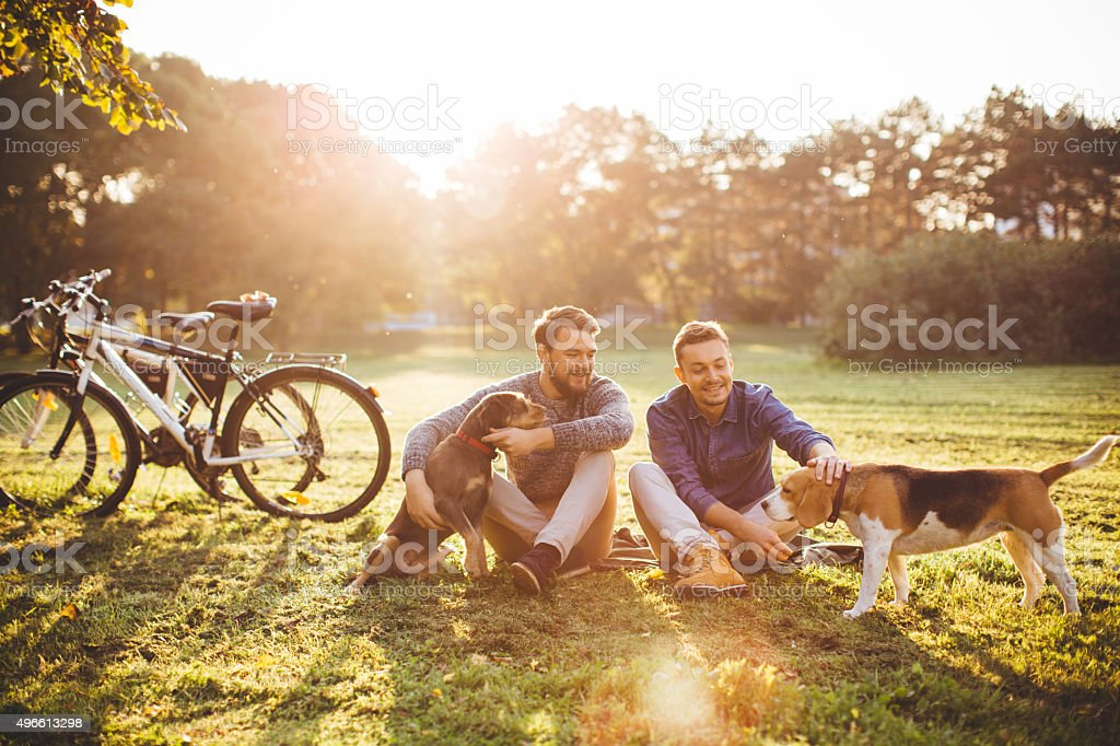Sunny day stroll. stock photo