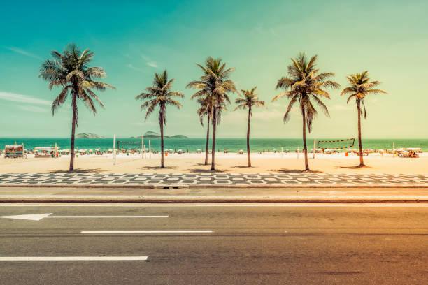 sonniger tag mit palmen am strand von ipanema in rio de janeiro - rio de janeiro stock-fotos und bilder
