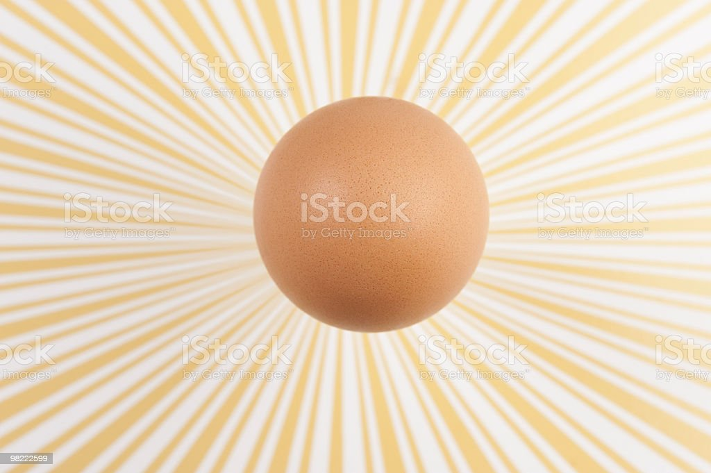 sunny egg royalty-free stock photo