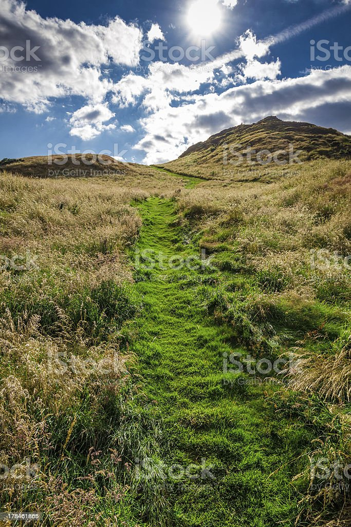 Sunny footpath to the hill in summer royalty-free stock photo