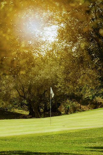 Beautiful and sunny golf course green with flag surrounded by olive trees. Selective focus. Golf course and beauty concept.