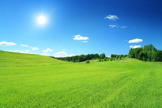 Sunny Landscape - Blue Sky and Field XXXL image stock photo
