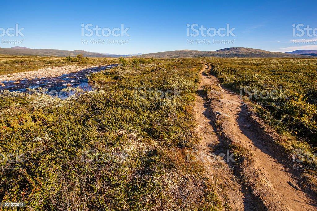 sunny landscape Norway mountains Dovrefjell photo libre de droits