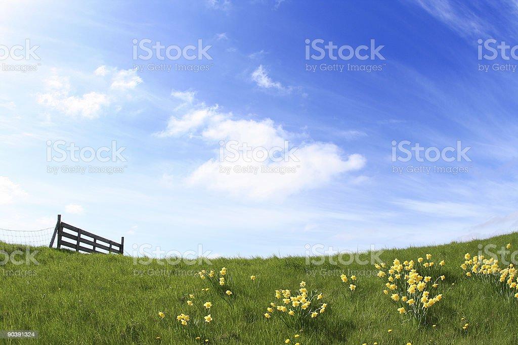 Sunny Landscape royalty-free stock photo